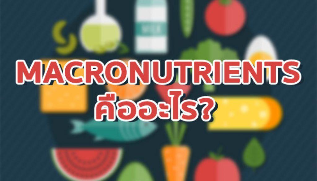 macronutrients, สารอาหารหลัก