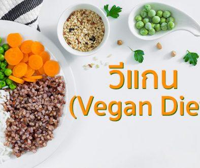 วีแกน, vegan diet