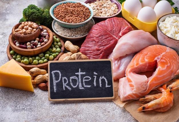 แหล่งโปรตีน