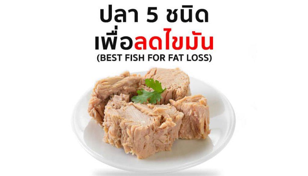 ปลา-5-ชนิดเพื่อลดไขมัน