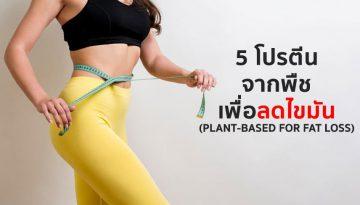5-โปรตีนจากพืช-เพื่อลดไขมัน